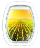 Napa Valley scenic flight Stock Photography