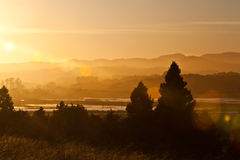 Napa valley. View of the Napa valley at sunset in the summer Stock Photos