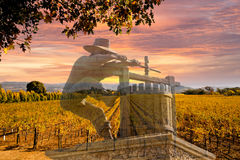 Napa Valley Vineyards, Autumn, Mountains, Sunrise Sky. Napa Valley California rows of vineyards in autumn with colorful sunrise sky and image of Napa wine maker Royalty Free Stock Photo