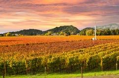 Napa Valley Vineyards Autumn Sunset Stock Photos