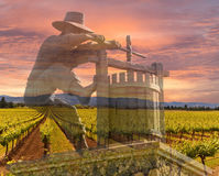 Napa Valley Vineyards, Spring, Mountains, Sunrise Sky Royalty Free Stock Images