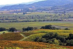 Napa Valley Vineyards Royalty Free Stock Images