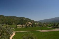 Napa Valley. In the warm California sun Royalty Free Stock Photo