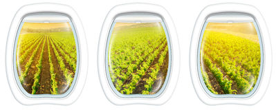 Napa Valley on window. Plane windows on Napa Valley at sunset, California, United States, from a plane through the porthole window. Copy space Royalty Free Stock Images