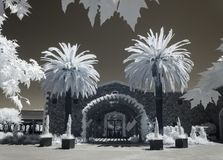Napa Valley Winery, Infrared. Dramatic infrared, Napa Valley Winery with Palm Trees stock photo