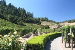 Napa winery Royalty Free Stock Images