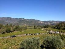 Napa winnicy wina dolinni gronowi winogrady objeżdżają wytwórnię win obraz stock