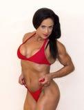 Napad i Skwierczeć Gorący w Czerwonym bikini, Curvy Fotografia Stock