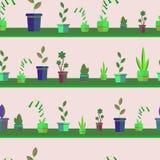 Naparstnicy, kwiaty, rośliny w garnkach na półkach royalty ilustracja
