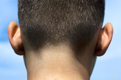 Nape of boy Stock Photography