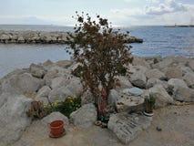 Napels - Aalmoezenier Pio op de klip van de strandboulevard stock foto