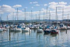 Napier, New Zealand Royalty Free Stock Photo