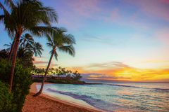 Napili Bay Sunset Beach with Palms Trees in Maui royalty free stock photo