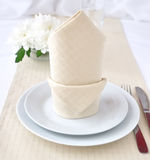 Napkin with bow Royalty Free Stock Photography