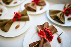 Napkin on plate Royalty Free Stock Images