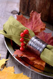 Napkin ring on a platter Stock Photography