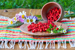On a napkin stands wooden bowl and a cup with wild strawberries. Stock Images