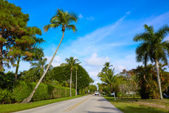 Naples beach streets with palm trees Florida US Royalty Free Stock Photos