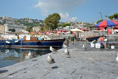 Naples fishermen Royalty Free Stock Photo