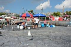 Naples fishermen Stock Images