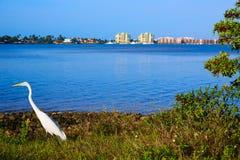 Naples Florida Marco Island sikt Florida USA Arkivfoto
