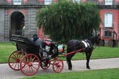 NAPLES ITALIEN, MARS 2014 - traditionell hästdragen barnvagn i Reggiaen di Capodimonte Parkera arkivfoto