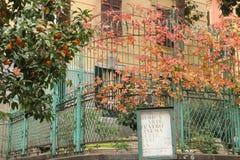 Naples - l'Italie Photo libre de droits