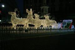 Naples renifery Zdjęcie Stock