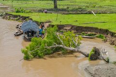 NAPO, PERU - JULY 16, 2015: Local people in their boats. Felled tree present, as a result of a water erosio. N royalty free stock photos