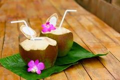 Napoju koksu woda, mleko dieta Odżywianie, uwadnianie witaminy Zdjęcia Stock