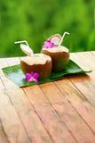 Napoju koksu woda, mleko dieta Odżywianie, uwadnianie witaminy Fotografia Stock