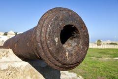 Free Napoleon S Cannon Royalty Free Stock Photography - 30031777