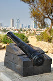 Napoleon`s  cannon. Jaffa. Stock Photo