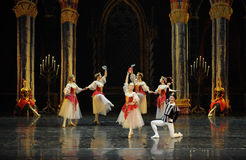 Napoli dance-The prince adult ceremony-ballet Swan Lake Royalty Free Stock Photos
