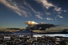 Napoli SU gabbiano των Η.Ε Στοκ φωτογραφία με δικαίωμα ελεύθερης χρήσης