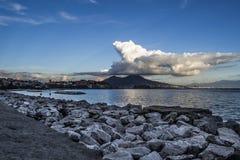 Napoli SU gabbiano των Η.Ε Στοκ Εικόνα