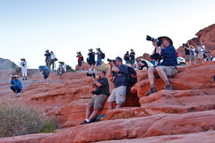 NAPP Photo Safari 2010 at the Valley of Fire Stock Photography