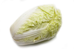 Nappa cabbage isolated Stock Photography