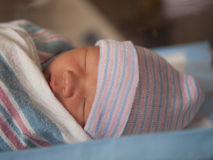 Napping newborn Stock Photo