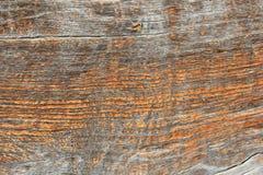 Naprawdę stara dębowego drewna tekstura Obrazy Stock