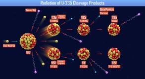 Napromienianie U-235 rozszczepienia produkty royalty ilustracja