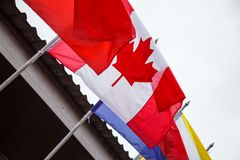 Naród flaga Kanada, kanadyjczyk flaga lub liścia klonowego tła projekty z pionowo triband czerwony dźwignik, popieramy kogoś stro obrazy royalty free