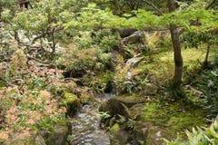 Nara, Japão Foto de Stock