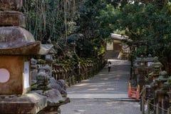 NARA, JAPÃO - 30 DE JANEIRO DE 2018: Mulher que anda no santuário de Kasuga em Nara que olha as lanternas imagens de stock royalty free