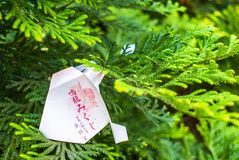 Nara, Japão - 26 de julho de 2017: Pedaço de papel bonito e pequeno da oração no templo de Todai Ji, pedaços de papel pequenos us Imagens de Stock Royalty Free