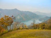Nara, Japón - 26 de julio de 2017: Paisaje hermoso del otoño, árboles amarillos y hojas, follaje colorido del otoño en el otoño Imagenes de archivo