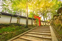Kasuga Taisha Torii royalty free stock photo