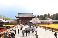 NARA, JAPAN - 2 APRIL, 2019: Tourists at entrance in Todaiji Temple. Great Eastern Temple, one of the powerful Seven Great Temple. UNESCO world heritage site stock photo