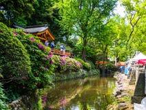 Nara, Japan - Juli 26, 2017: Niet geïdentificeerde mensen die van de mening van een park, met een mooie articificial vijver genie Stock Afbeelding