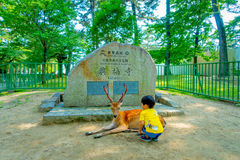 Nara Japan - Juli 26, 2017: Oidentifierat barn som bär en gul t-skjorta som loiking en lös hjort i Nara, Japan Nara är a Arkivbild